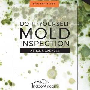 Book cover for DIY Mold Inspection – Attics and Garages