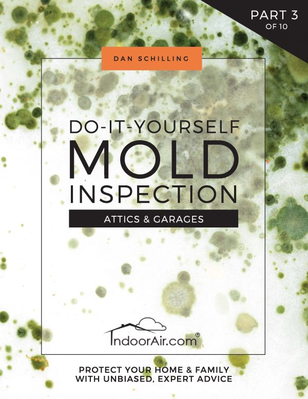 Book cover for DIY Mold Inspection – Attics and Garages for learning to inspect for attic mold