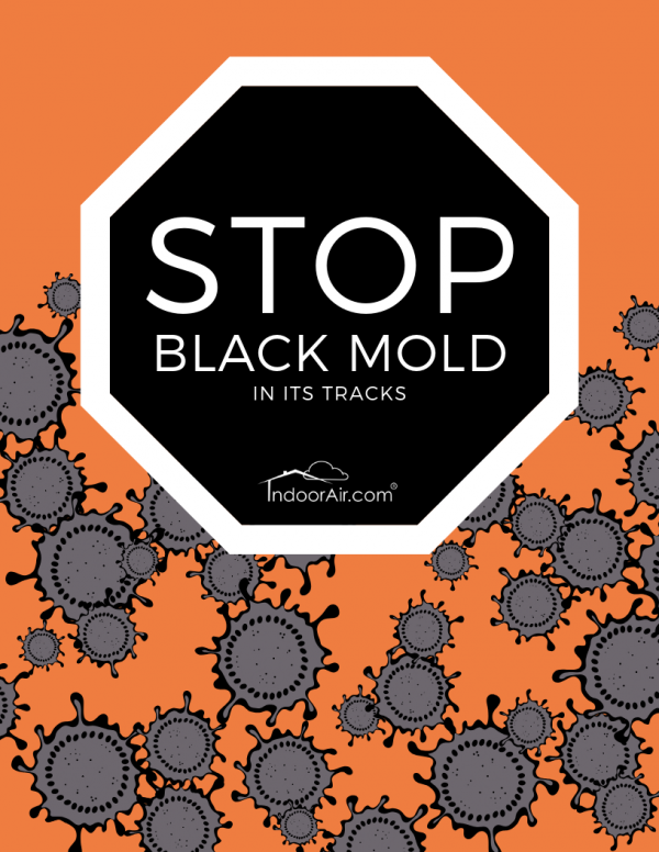 Stop Black Mold in its Track Free Book