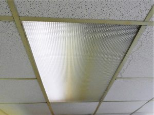 Fluorescent light sensitivity is increased when bulbs age and when you hear a fluorescent light hum from failing transformers.