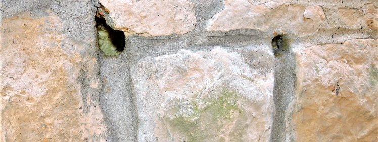 Mice infestation entering a house through holes chewed through stone siding
