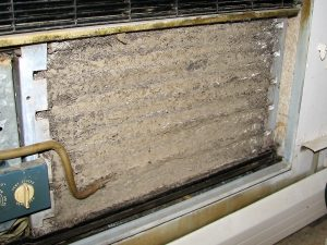air conditioner mold within dust on coil