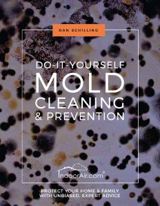 Book cover for DIY Mold Cleaning and Prevention