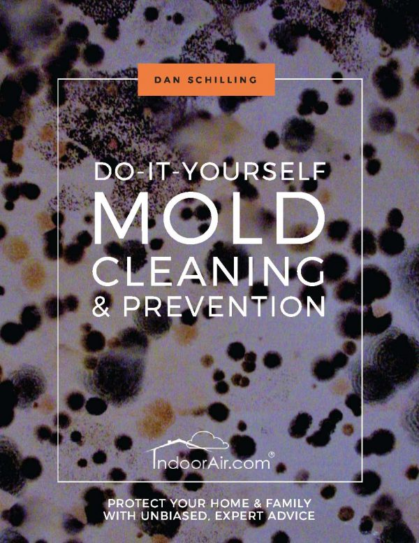 Book cover for DIY Mold Cleaning and Prevention. This book tells people how to do mold removal and avoid black mold exposure.