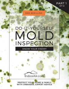 Book cover for DIY Mold Inspection book