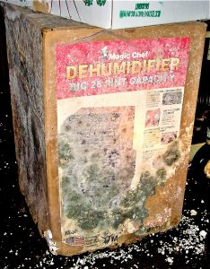 Dehumidifier left in the box and the box grows mold on it