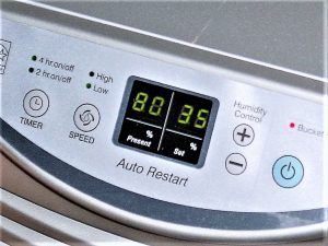 Dehumidifier with built in humidity gauge